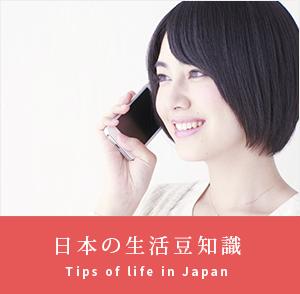 日本の生活豆知識