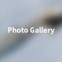 btmMenu-extraact-gallery